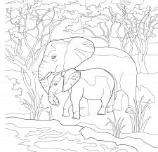 """Линейный рисунок """"Слоны"""""""