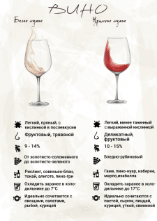 Инфографика  - Гид начинающего сомелье