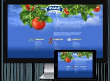 Создание сайта компании «Чумак»