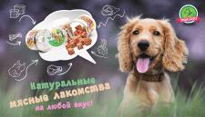 баннер магазина товаров для животных