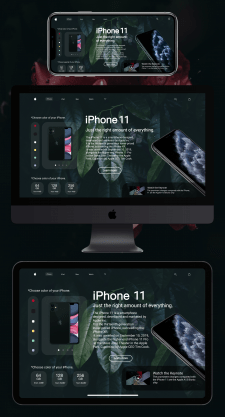 iPhone 11 Web Design