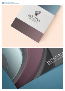 Acctiva Consulting