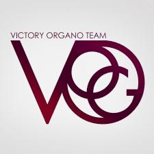 Логотип VOG