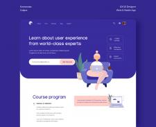 Ниша: онлайн обучение