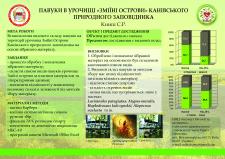 Постер для научной конференции