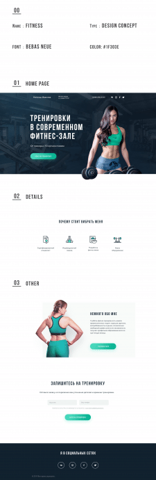 Fitness Project Interface