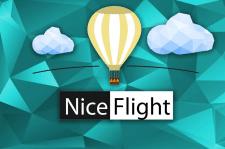 NiceFlight
