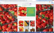 """Сайт домашнего """"ягодного"""" хозяйства"""