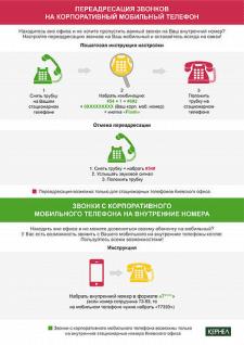 """Внутренняя инфографика для компании """"Кернел"""""""