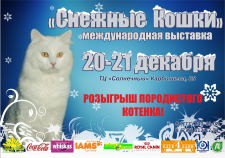 афиша для выставки кошек