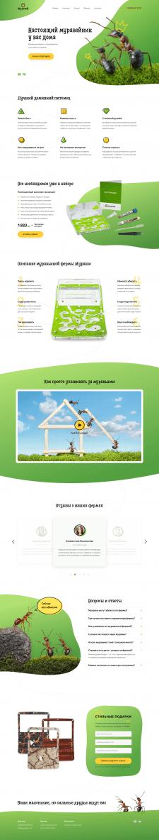 Лендинг для продажи муравьиных ферм | Дизайн