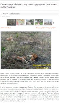Сафари-парк «Тайган»: мир дикой природы на расстоя