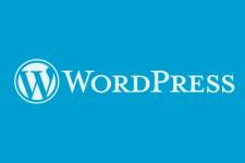 Мощная защита сайта на Wordpress
