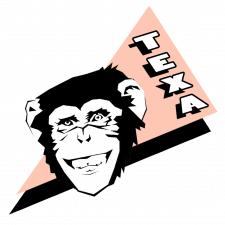 TEXA logo_1