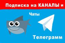 +300 подписчиков Telegram