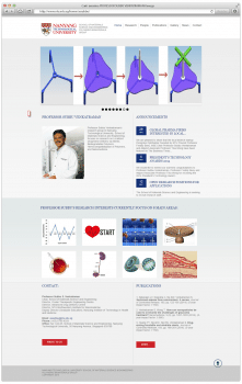 Сайт для Professor Subbu Venkatraman's