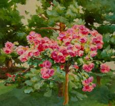 Сосна и розы