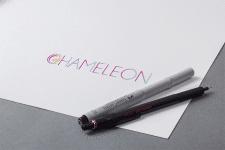 логотип для Chameleon
