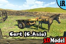 3D Model -