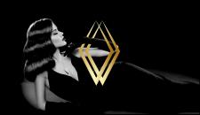 Velvet logo presentation