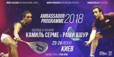 """Баннер """"Ambassador Programme 2018"""""""