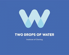Two drops of water