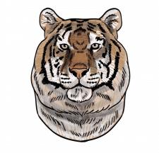 векторная графика Тигр