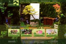 Разработка дизайна интернет-магазина растений