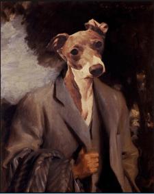 ART  портер собаки