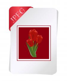 Іконка файла JPEC
