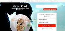 Рекламный-продающий сайт бижутерии