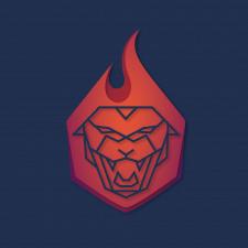 Paperoska logo variants