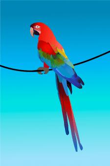 Попугай ара вектор