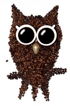 Сова из кофе Разработка дизайна для рекла