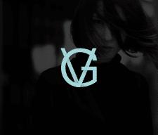 Именной логотип VG
