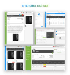 "Cabinet Of Dropshipping System ""Intercust"""