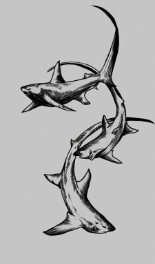 Дизайн эскиза татуировки ( Лисьи акулу)