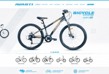 Avanti Bicycles