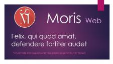 "Тизер ""Moris Web"""
