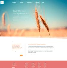 HTML/CSS верстка