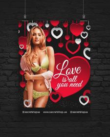 Постер для магазина белья