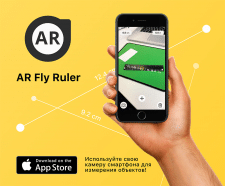 AR Fly Ruler