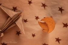 предметная съемка_печенье