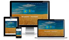 Корпоративный сайт для общественной организации