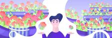 Иллюстрация к статье о различии роз