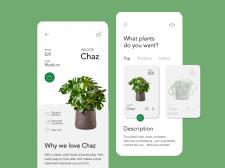 Plants Shop App Concept