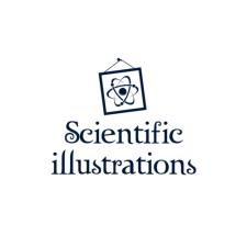 Научная иллюстрация