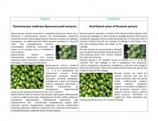 Питательные свойства брюссельской капусты