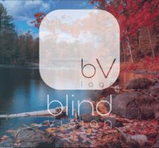 Blind Vision Studio