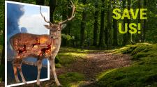 Постер на тему экологии